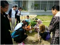 โรงพยาบาลกรุงเทพหาดใหญ่ร่วมกับคณะพยาบาลฯปลูกต้นไม้